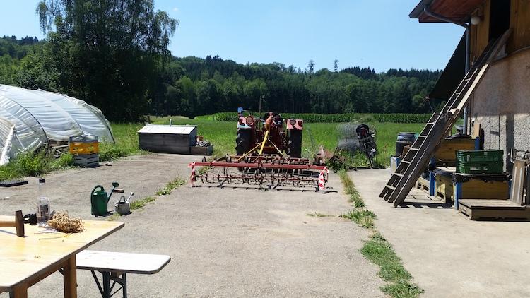 Abb. 3: Impressionen vom Pflanzplatz Dunkelhölzli.