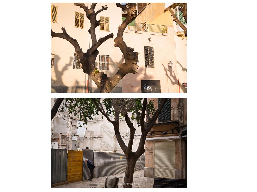 Zeitline # Palma, 2015