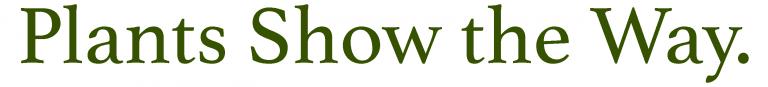 brigidsway-com-plants-show-the-way-768x87.png