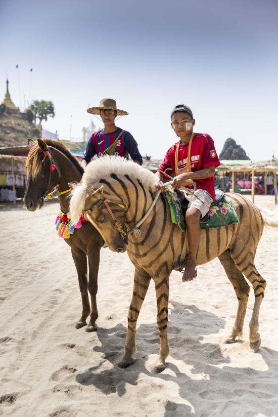 When a zebra is a horse - Hand painted ponies on Chaung Tha beach tempt and delight.