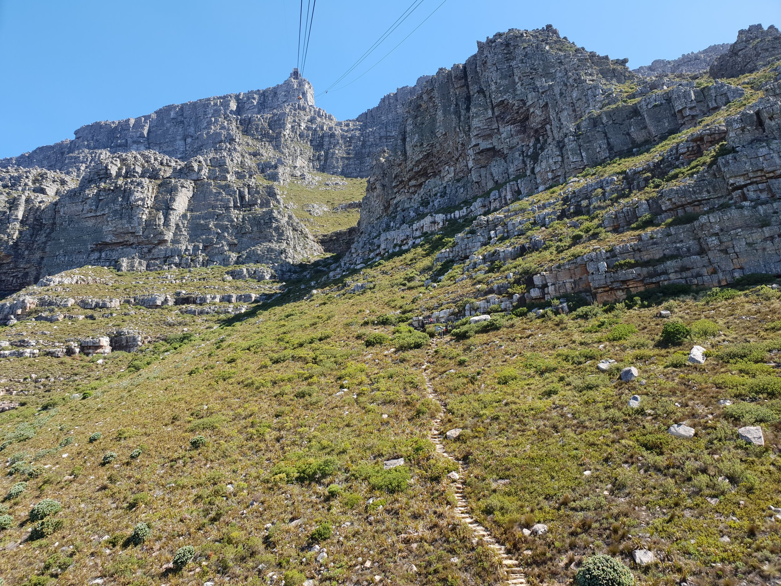 Go up Table Mountain- Hike or take the cablecar