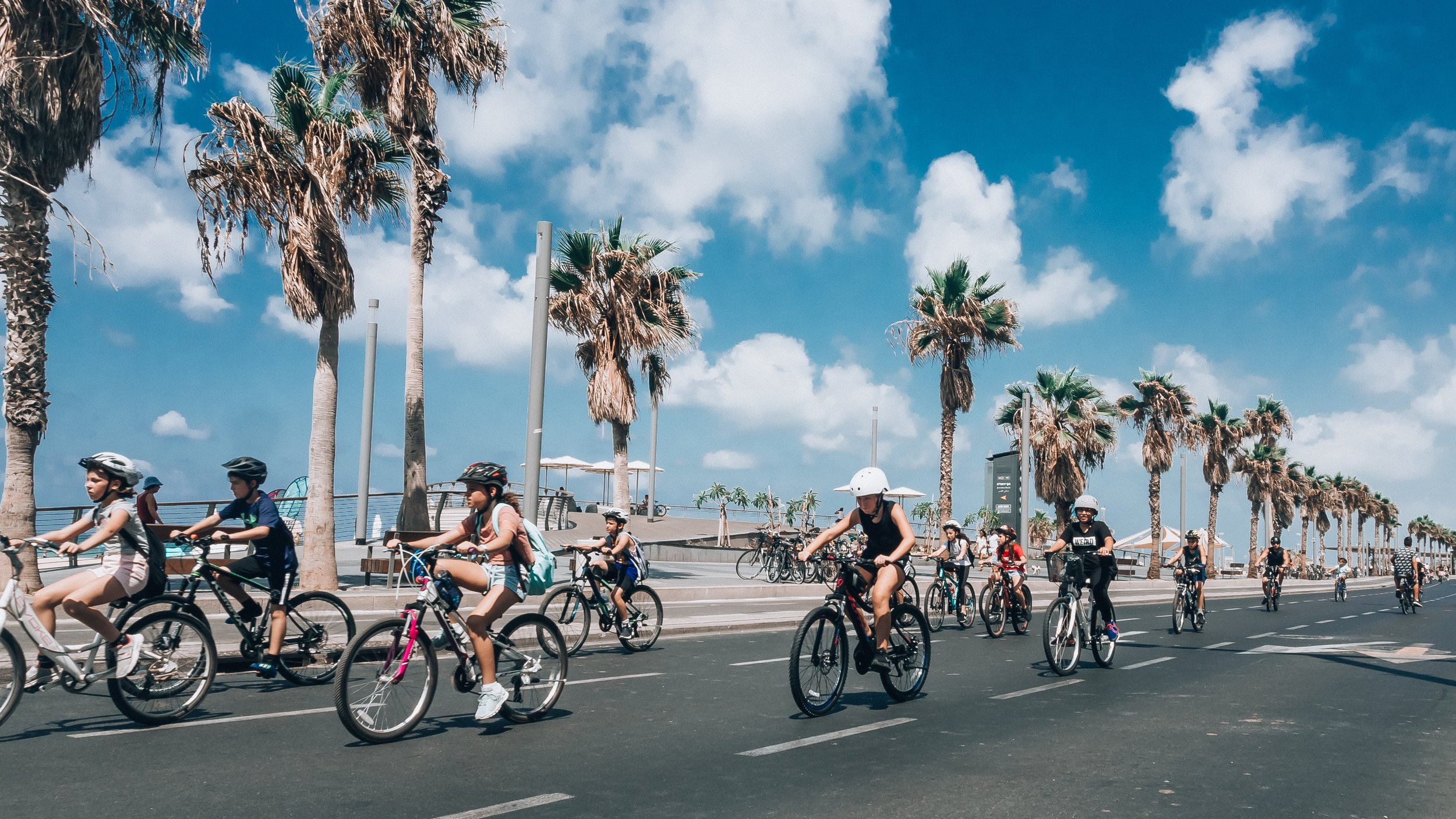 Getting out and about has never been easier! Rental bikes and scooters are spread around the city for you to use.