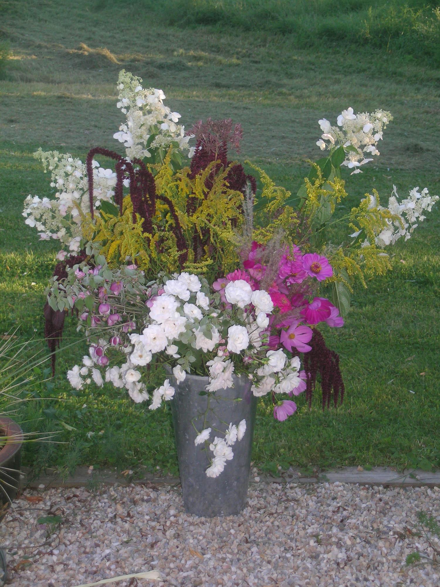 gardenandmeadowplants copy.jpg