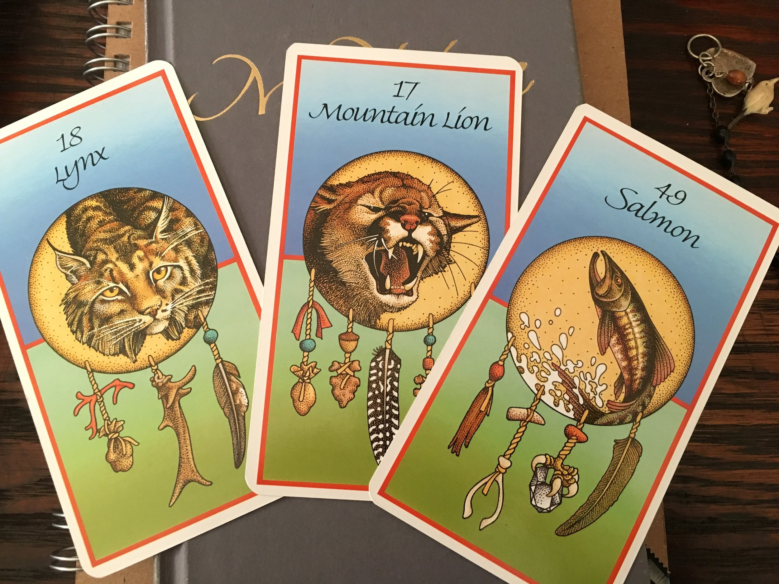 Quiet Seeds Mission Statement? Consult ye 'ol Animal Medicine deck...et voila! The Quiet Seeds mission: To remind people of their worth.