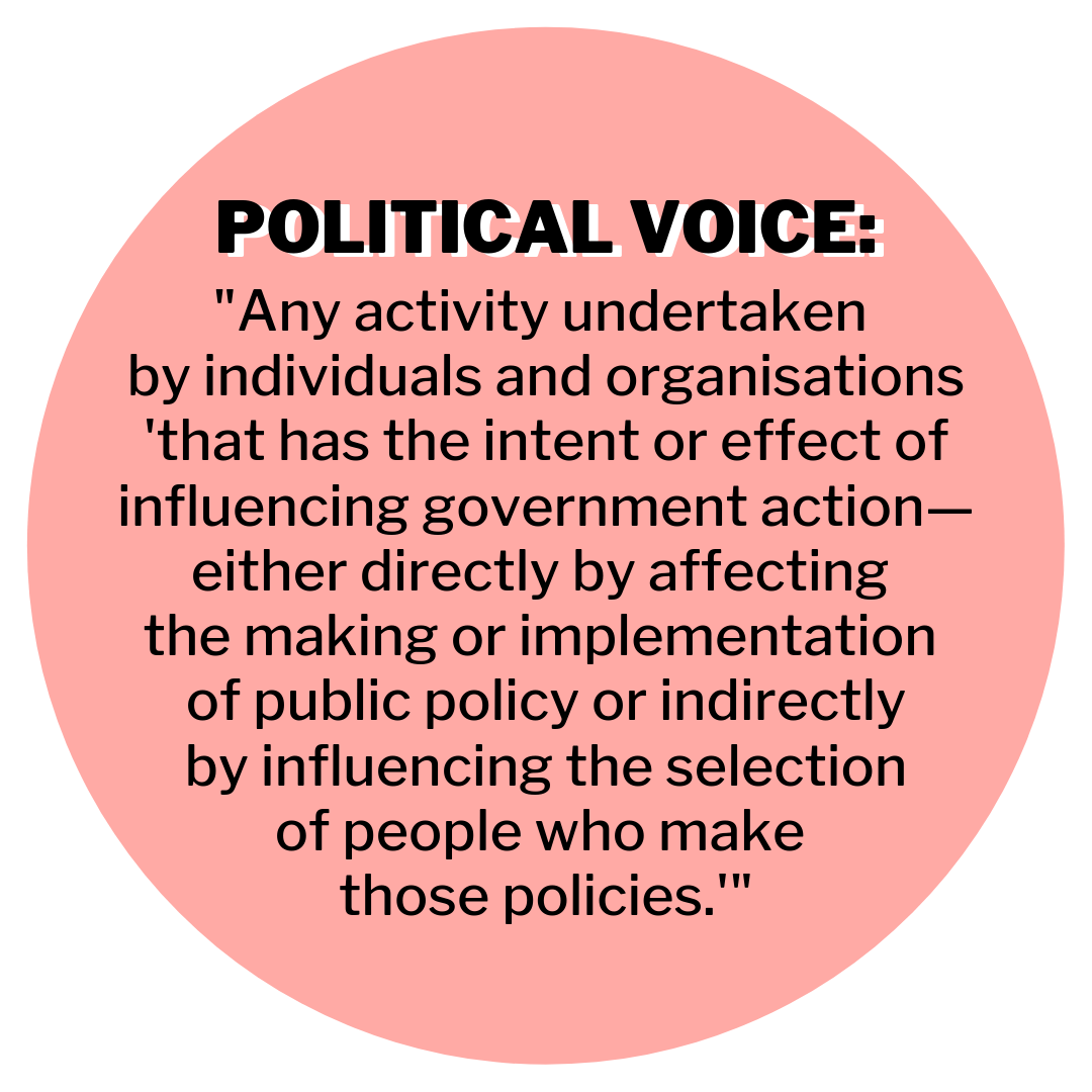 "Political voice: ""Any activity undertaken by individuals and organisations 'that has the intent or effect of influencing government action—either directly by affecting the making or implementation of public policy or indirectly by influencing the selection of people who make those policies.'"" -  Verba, Schlozman, and Brady"