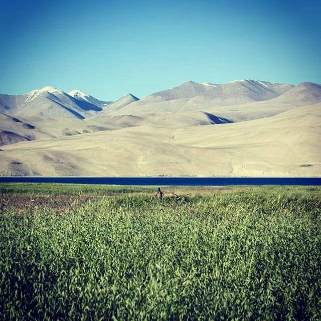 Beautiful Ladakh  #inde #india #bandhan #bandhantravel #agencedevoyageeninde #agencedevoyagefrancophone #voyagesurmesure #voyageeninde  #tailormadetravel #travelphotography #travelindia #travelagency #indianculture  #ladakh #beautifullandscape #tsomoriri #indianmountains
