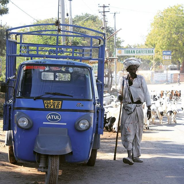 Shepherd in the street of Ahmedabad, Gujarat  #inde #india #bandhan #bandhantravel #agencedevoyageeninde #agencedevoyagefrancophone #voyagesurmesure #voyageeninde  #tailormadetravel #travelphotography #travelindia #travelagency #indianculture  #Gujarat #ahmedabad #indianshepherd