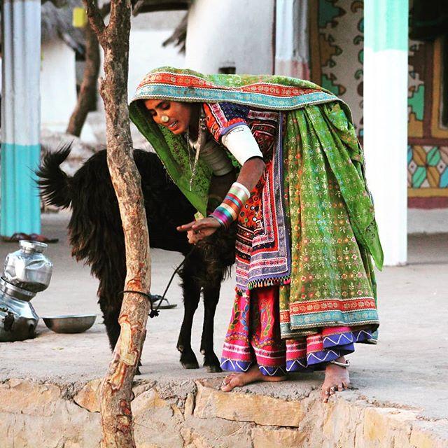 Woman in a village in Rann of Kutch, Gujarat  #inde #india #bandhan #bandhantravel #agencedevoyageeninde #agencedevoyagefrancophone #voyagesurmesure #voyageeninde  #tailormadetravel #travelphotography #travelindia #travelagency #indianculture  #rannofkutch #Gujarat #villages #indianvillages #colorfulindia #indiancountryside