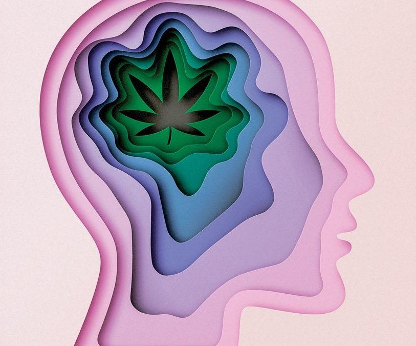 Marijuana-and-Brain-813x675.jpg