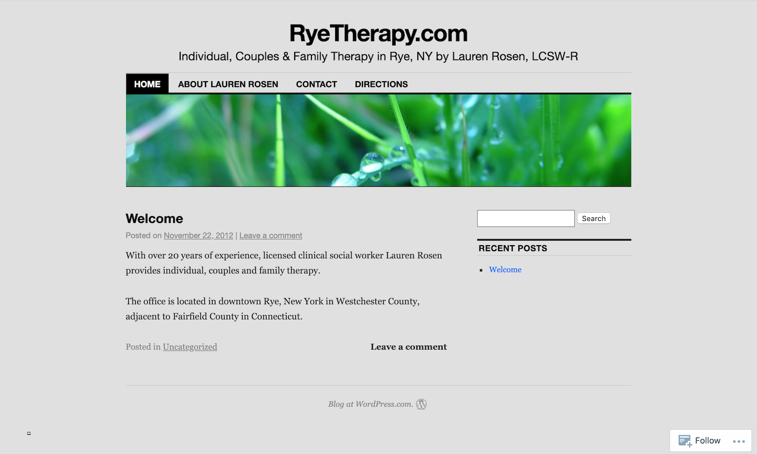 rye-therapy.png