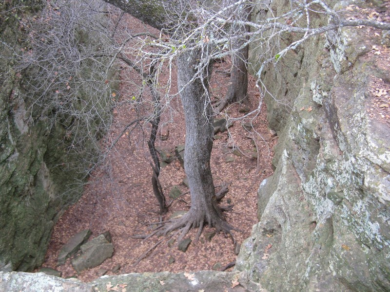 Mineral Wells 2009 022.jpg