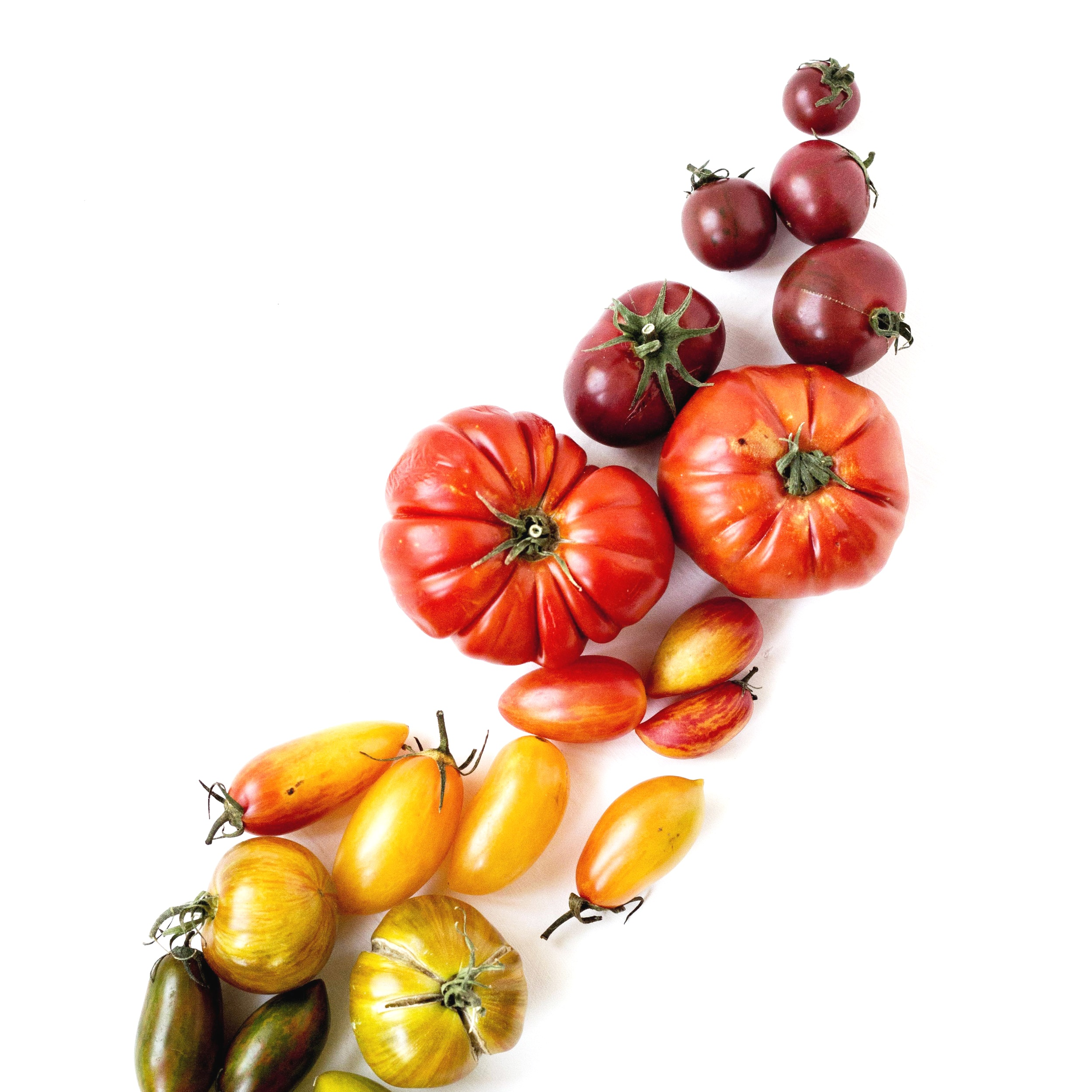 Nutritional Counseling -