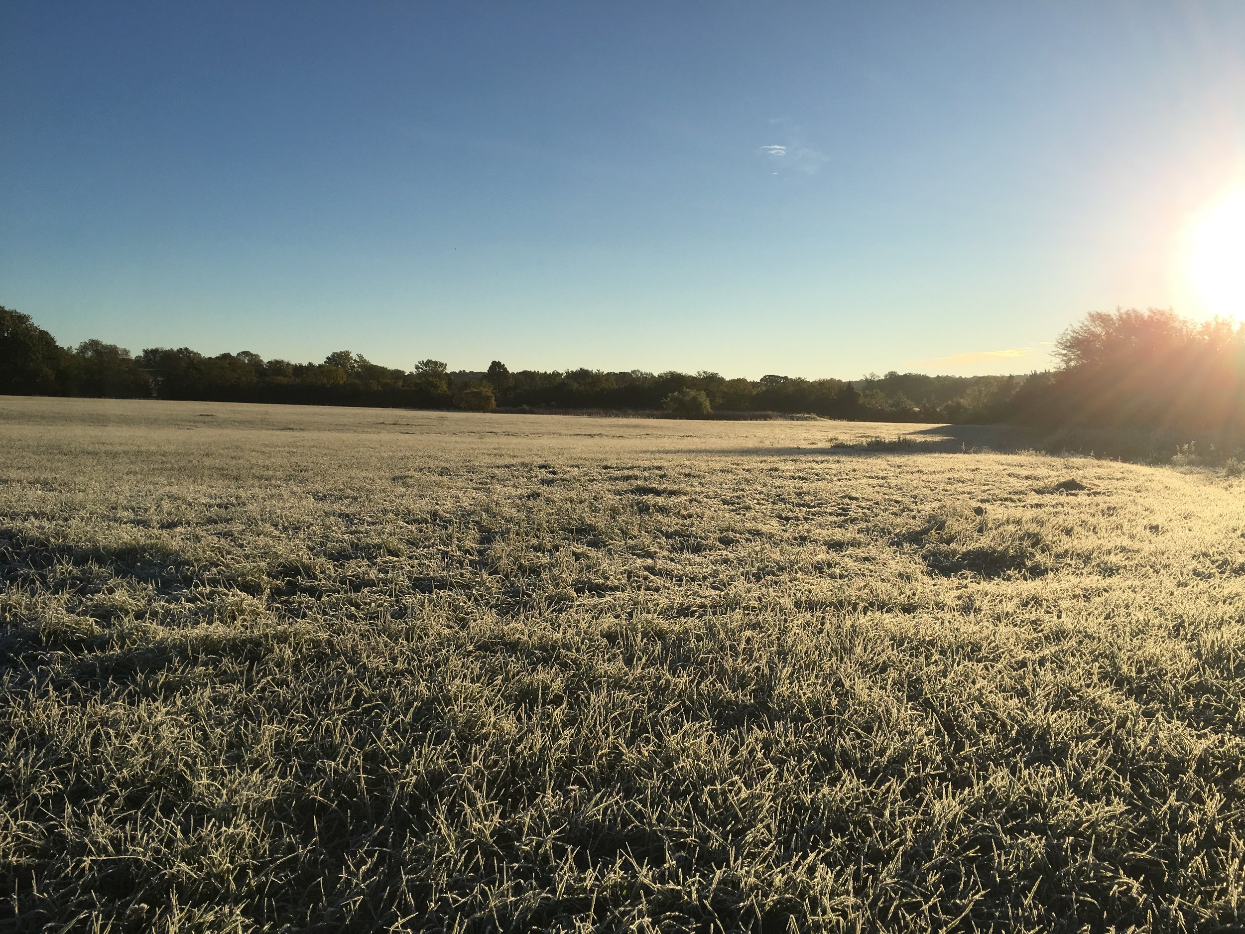 A beautiful frosty morning over the hay field.