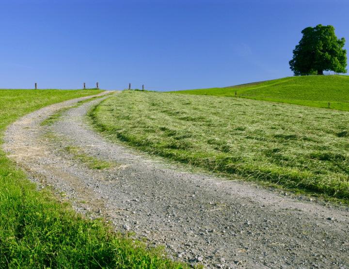 bend-in-road-2.jpg