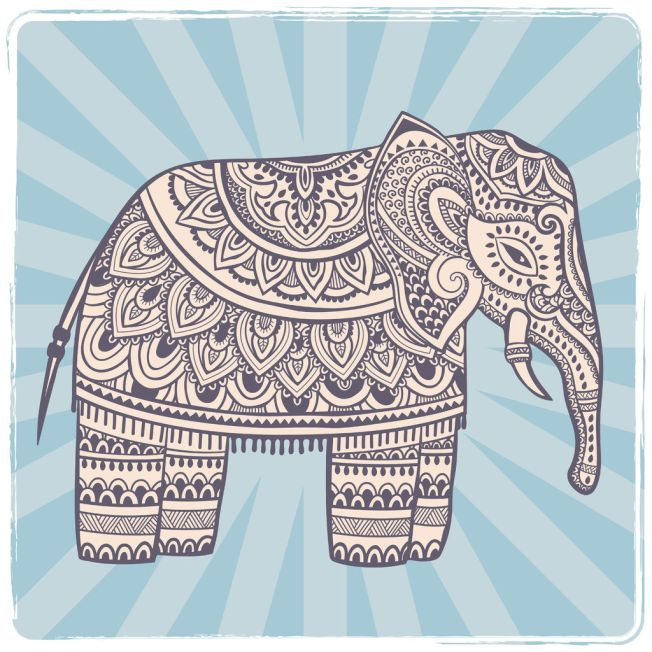 elephant-123rfcom.jpg
