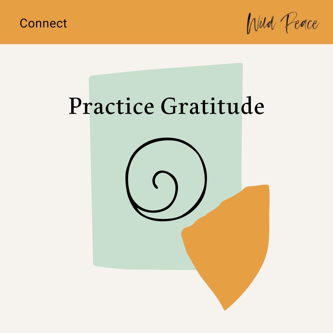 Connect-Practice-Gratitude.jpg