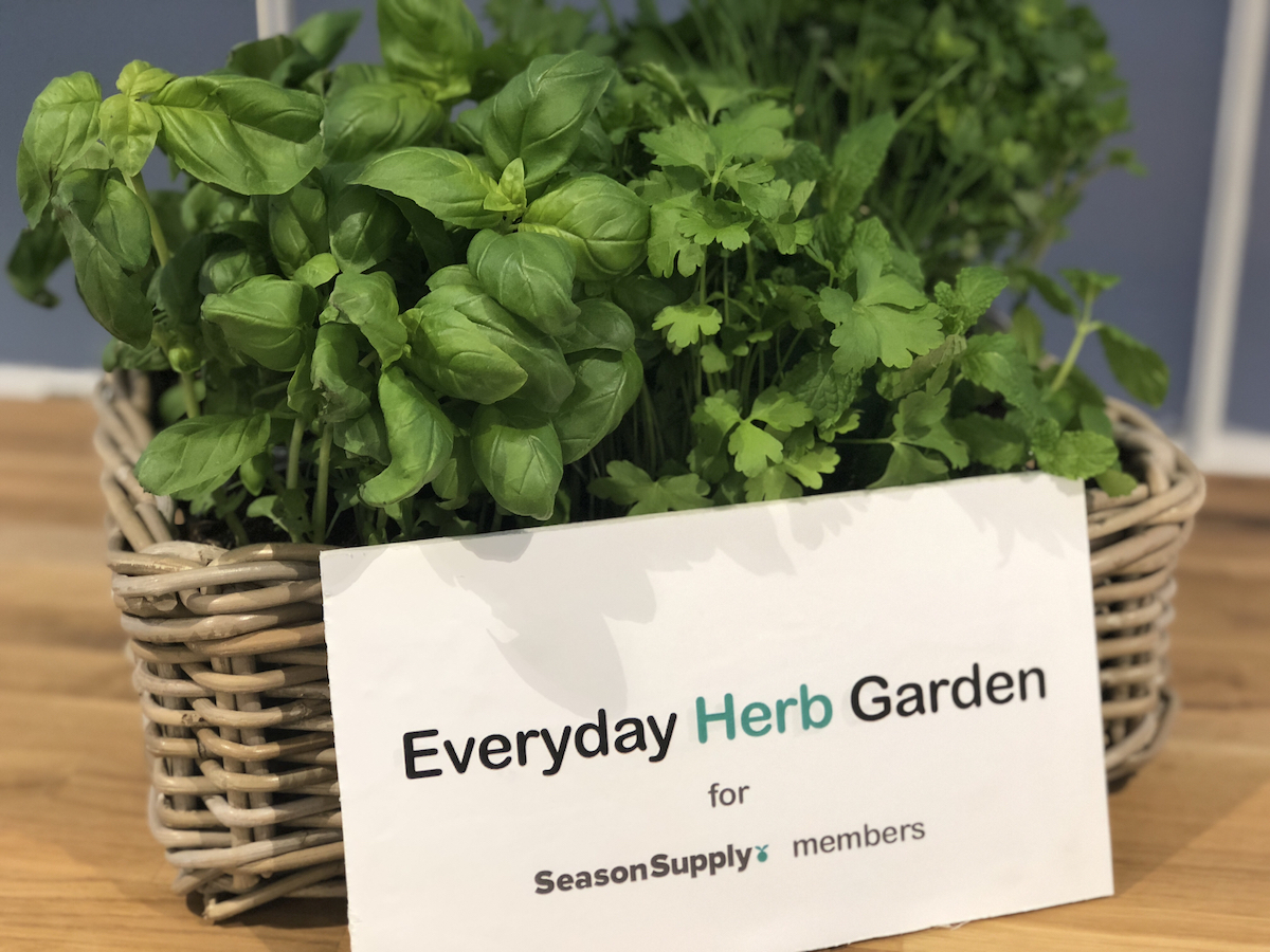 Just fresh - Missing some herbs to lift the taste of your dishes? No worries!Anytime this week, you can pick fresh herb leaves and take them home with your veg box. You can pick up a zip lock bag at the SeasonSupply collection point anytime.