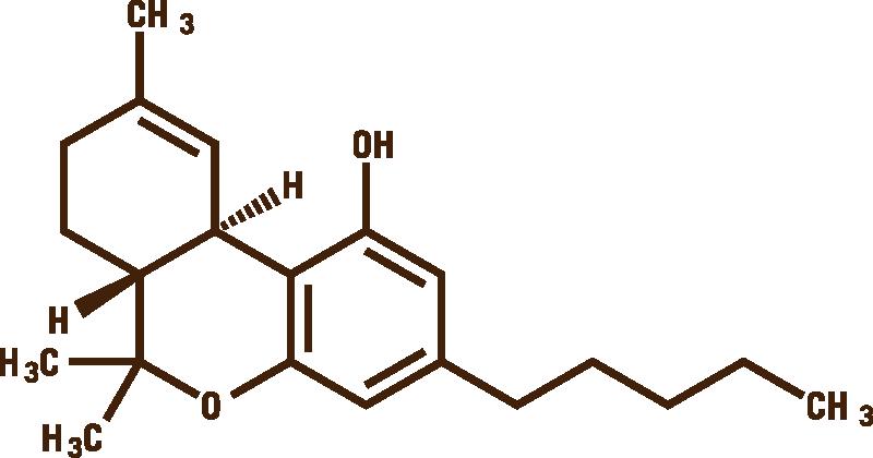 THC Molecule.png