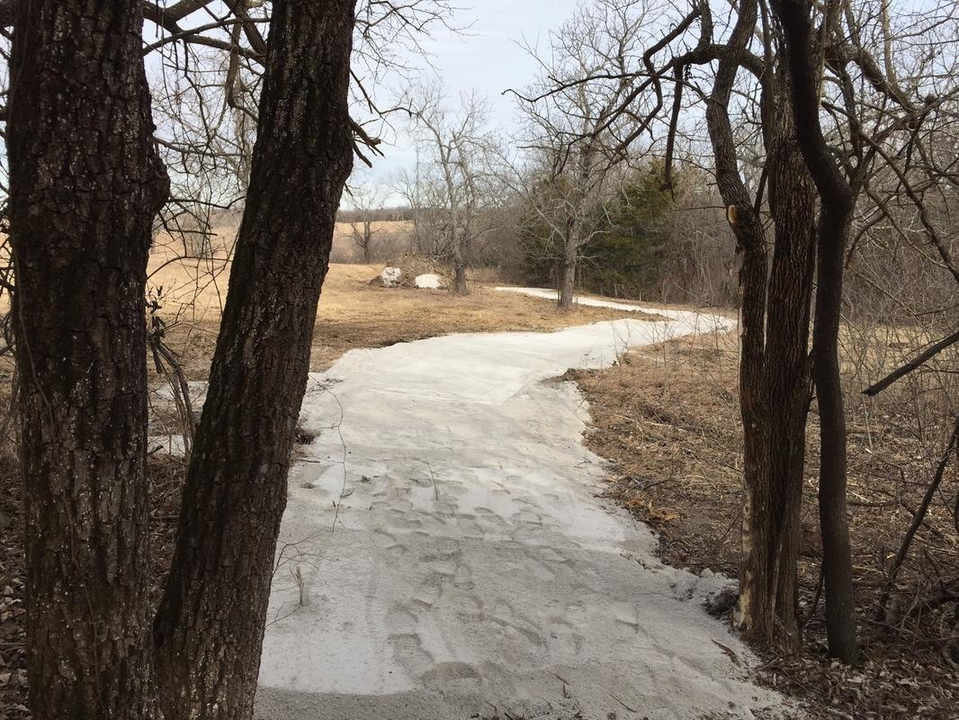 January 2017 - South Woods Loop