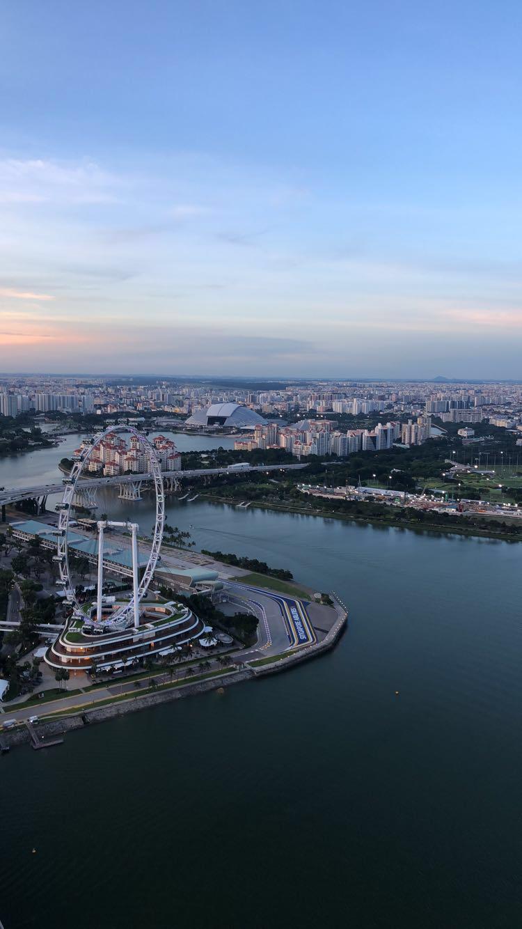 SingaporeFerrisWheel.jpeg