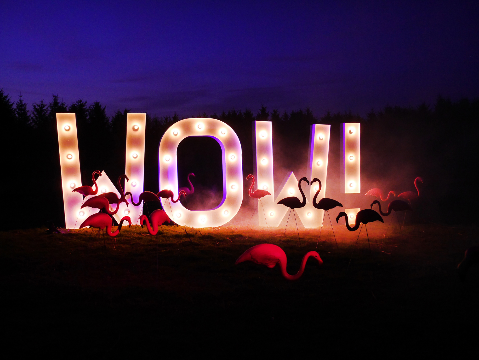 light up letters Vowed and Amazed.jpg