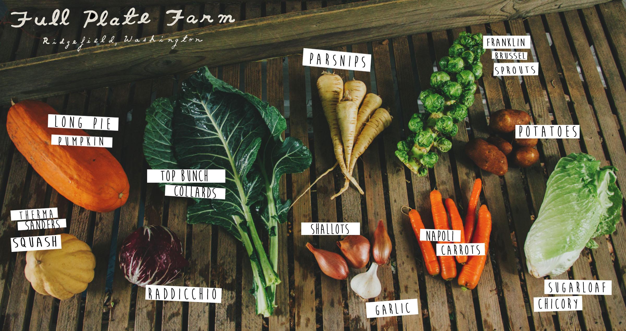 farm share_wk2b.jpg