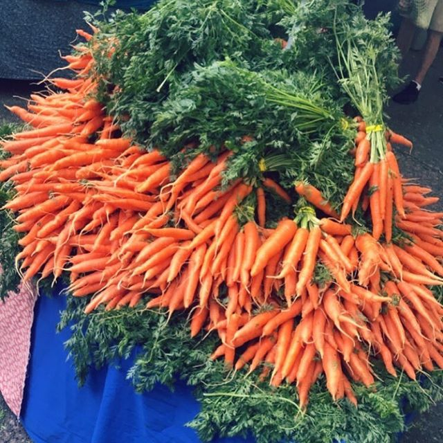 These carrots though! I recently visited the @portlandfarmers PSU Saturday market and found a plethora of colorful vegetables. Blog article coming soon! #carrots #vegetables #portland #portlandfarmersmarket #saturdaymarket #organic #fresh