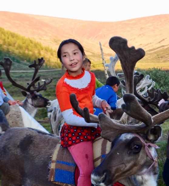 reindeer 3.jpeg
