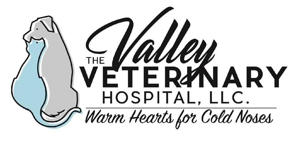 www.thevalleyvetclinic.com/