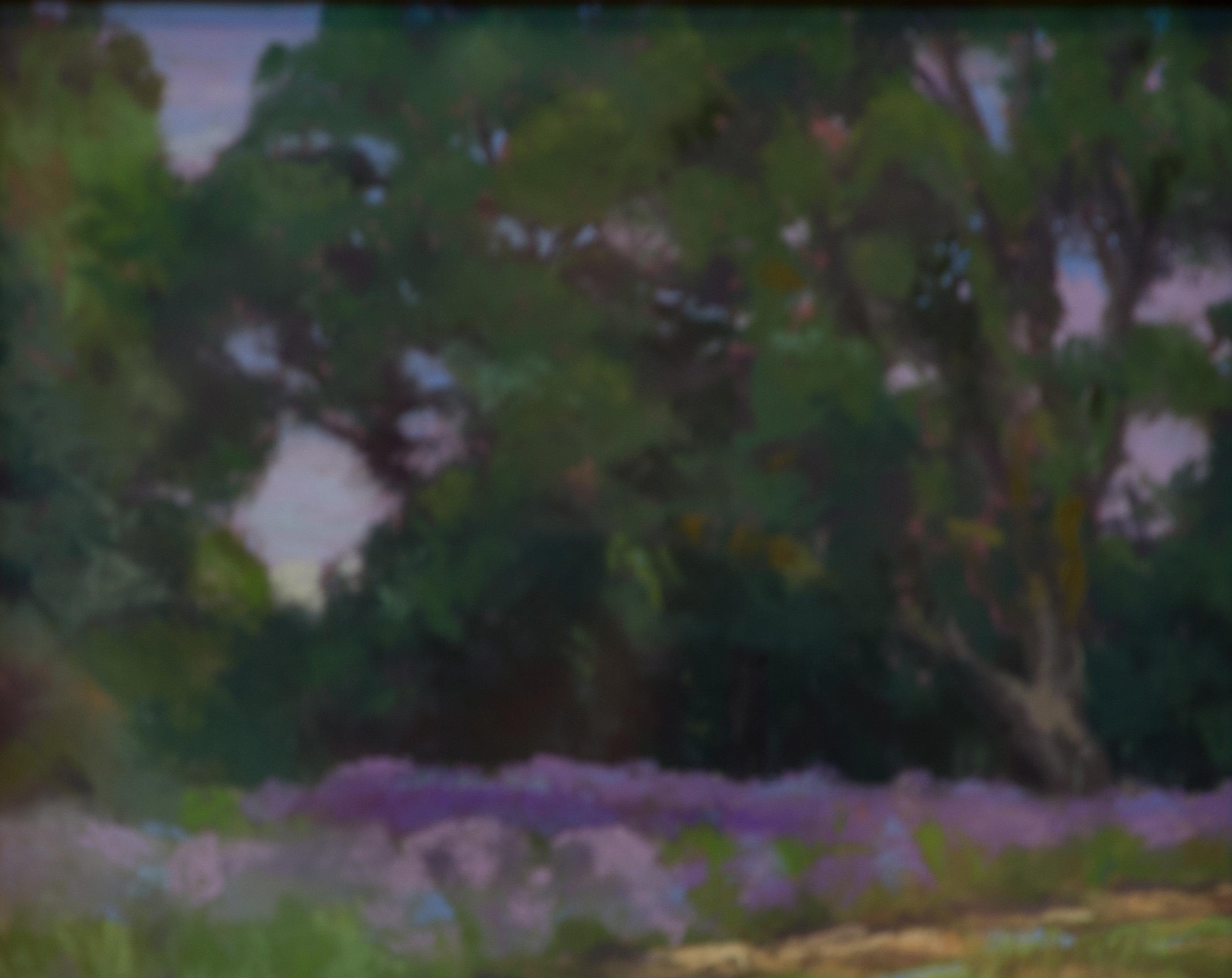 Majestic Oaks & Lavender