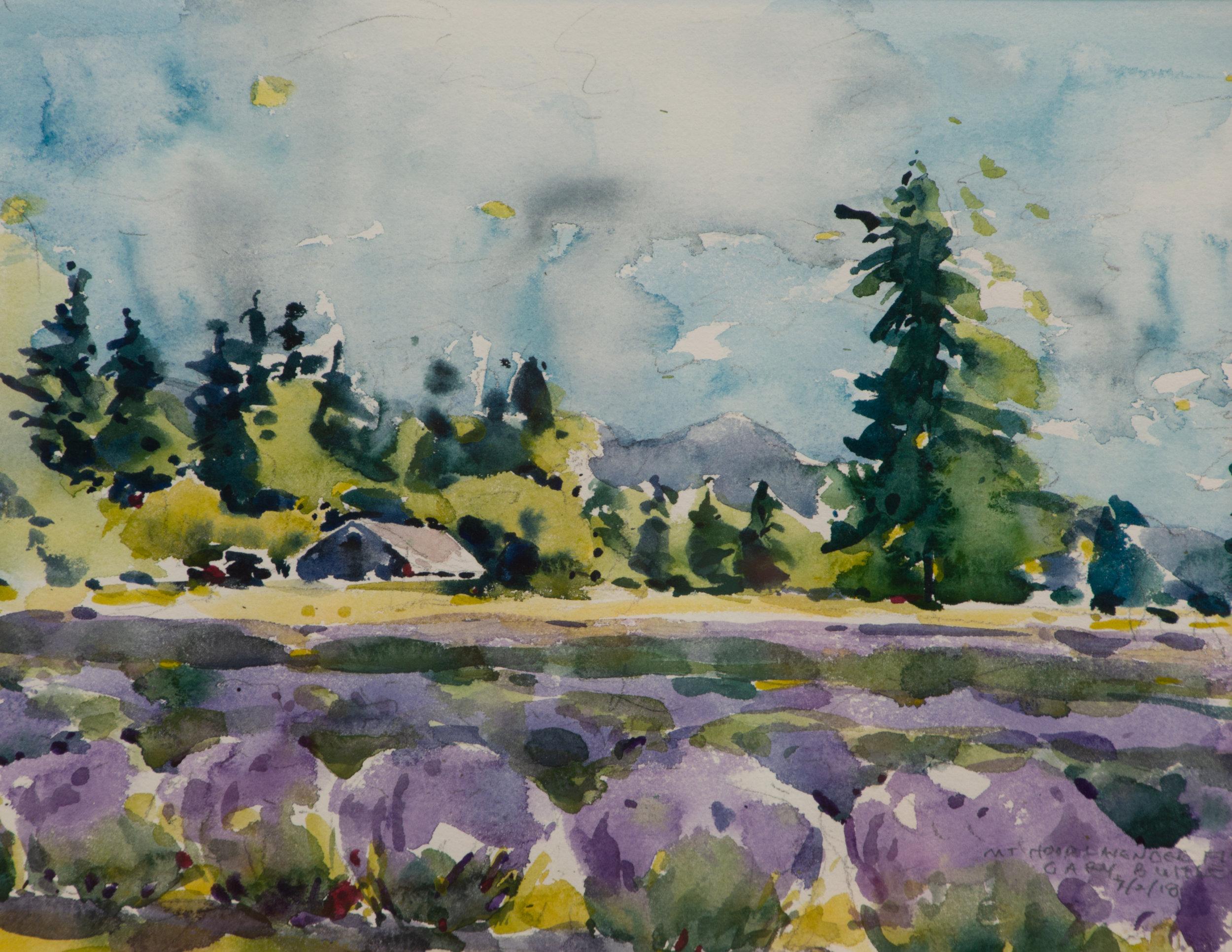 Lavender Mt. Hood