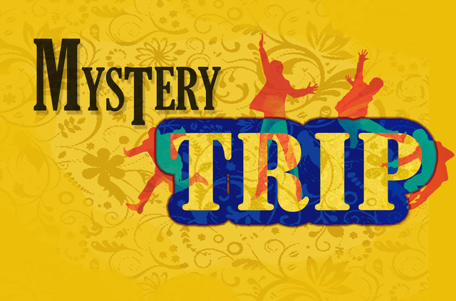 Mystery Trip - Beatles Cover Band, Guitarist & Vocalist