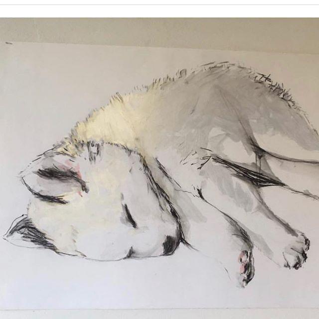 #repost dibujo de @marcelazen_ ✨🐚💚🙌🏾✨ #wolf #sleep #dreams #lobo al #amanecer