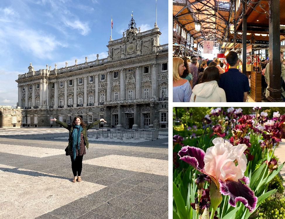 The Royal Palace of Madrid, Mercado de San Miguel, and Royal Botanic Garden, Madrid, Spain