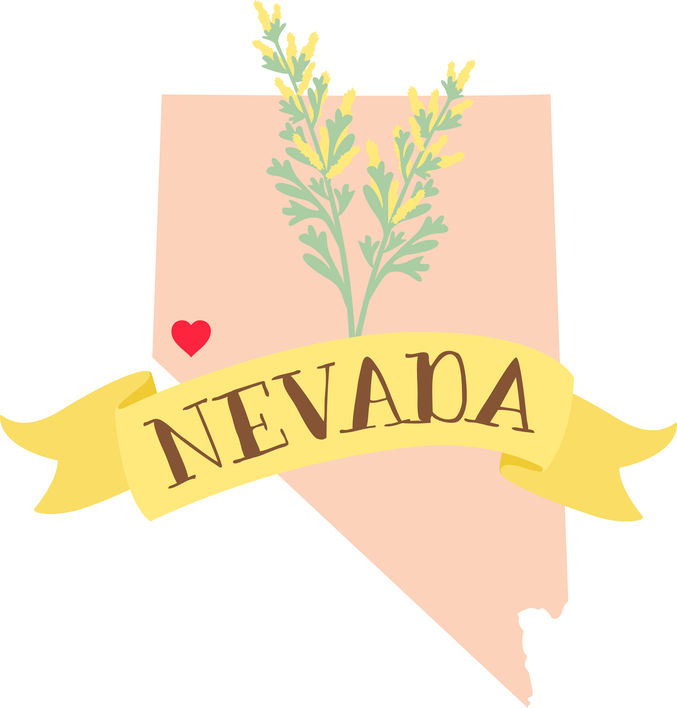 Nevada Surrogacy - ARTparenting has worked with gestational surrogates and intended parents from the state of Nevada to help build families through our complete surrogacy program.For more information, please call Meryl at (301) 217-0074.Intended parents: Read about our complete surrogacy program.