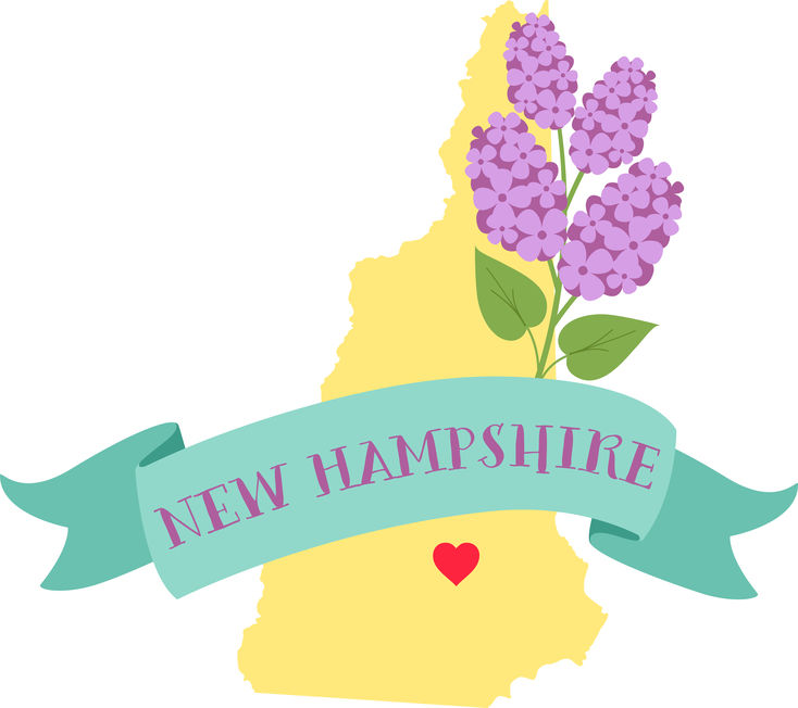 New Hampshire Surrogacy - ARTparenting has worked with gestational surrogates and intended parents from New Hampshire to help build families through our complete surrogacy program.For more information, please call Meryl at (301) 217-0074.Intended parents: Read about our complete surrogacy program.