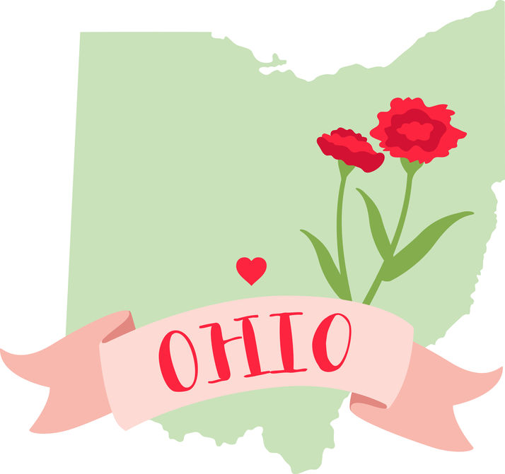 Ohio Surrogacy - ARTparenting works with gestational surrogates and intended parents from Ohio to help build families through our complete surrogacy program.For more information, please call Meryl at (301) 217-0074.Intended parents: Read about our complete surrogacy program.