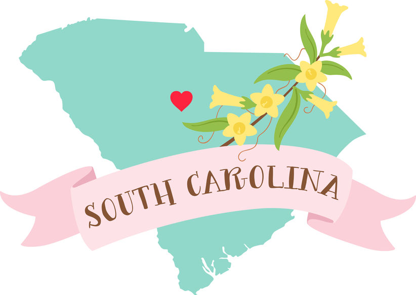 South Carolina Surrogacy - ARTparenting has worked with gestational surrogates and intended parents from the state of South Carolina to help build families through our complete surrogacy program.For more information, please call Meryl at (301) 217-0074.Intended parents: Read about our complete surrogacy program.