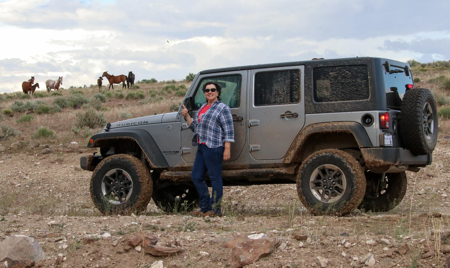 Suzanne Roy, executive director of American Wild Horse Campaign, practicing car etiquette.