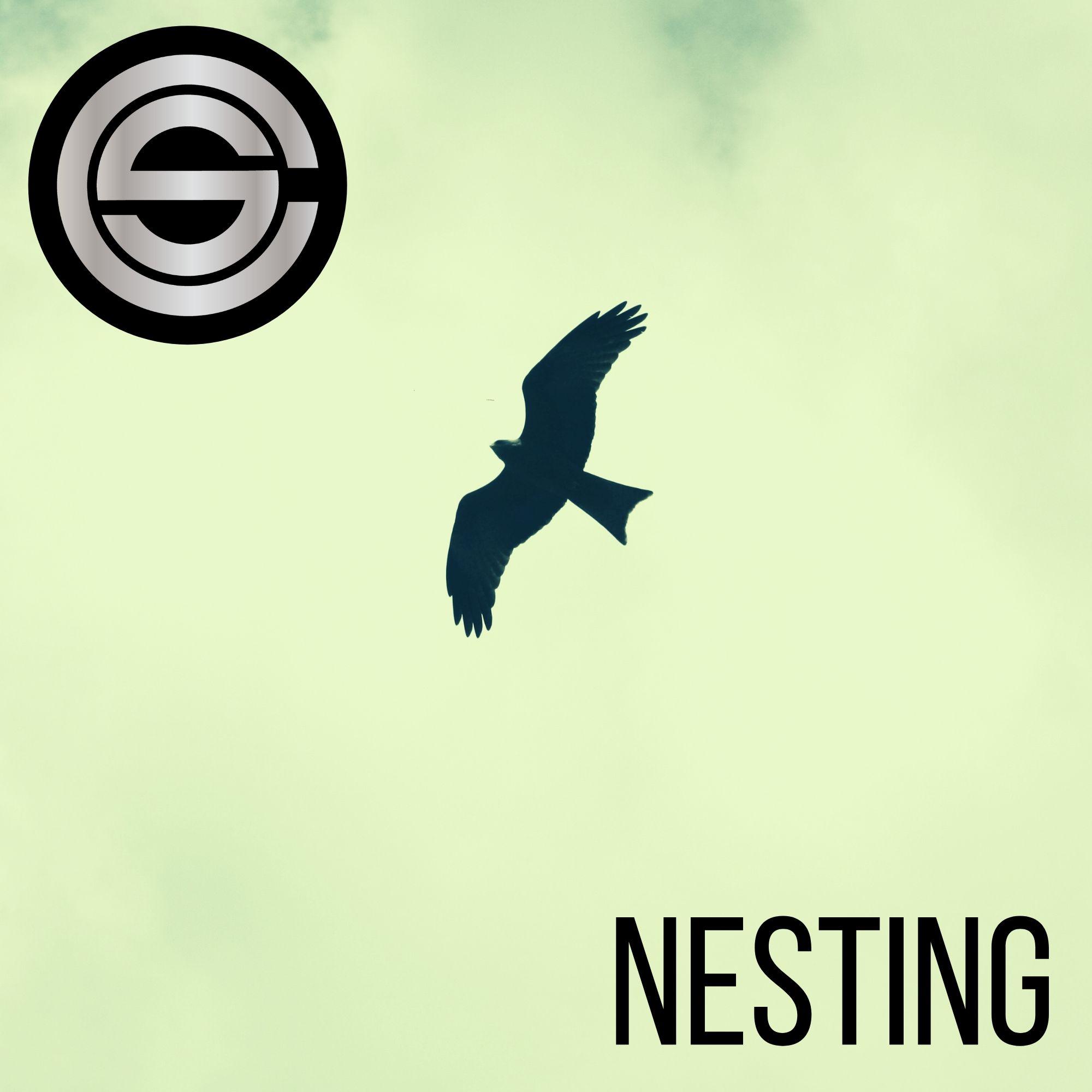 Nesting by Chris Swan