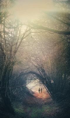 couple walking in woods-min.jpg