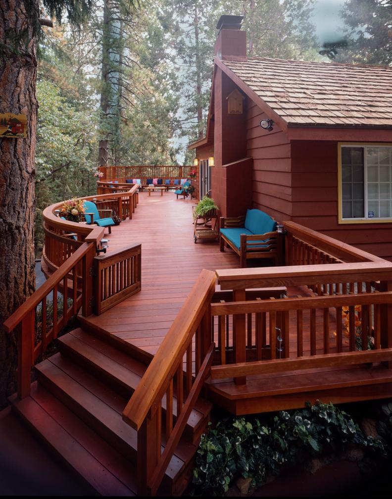 Redwood 25.jpg
