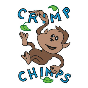CRIMP CHIMPS - Let us upcycle your favorite childhood stuffed animal into a fun new chalk bag! We take custom orders and also have tons of animal chalk bags for sale at www.crimpchimps.com!