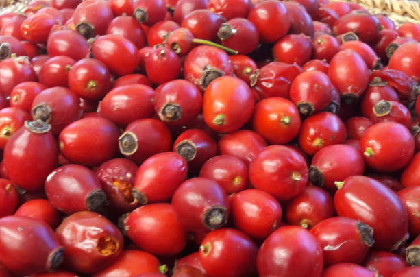 Wild Rosehip - Rose hip contains the seeds of the rose plant and is naturally rich in vitamin C. Once dried, it has the most delightful, sweet flavour combined with a slightly sirupy texture.