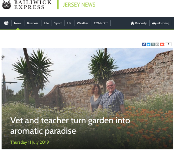 Want to know more? - Read the article published in Bailiwick Express