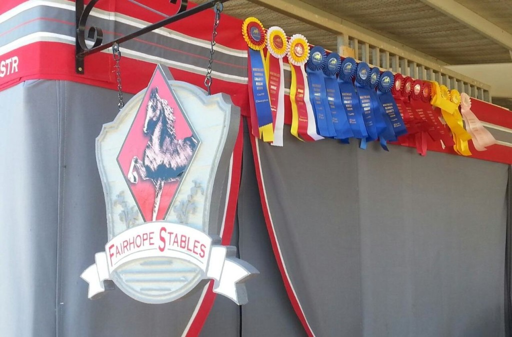 fairhope-ribbons-1024x675.jpg