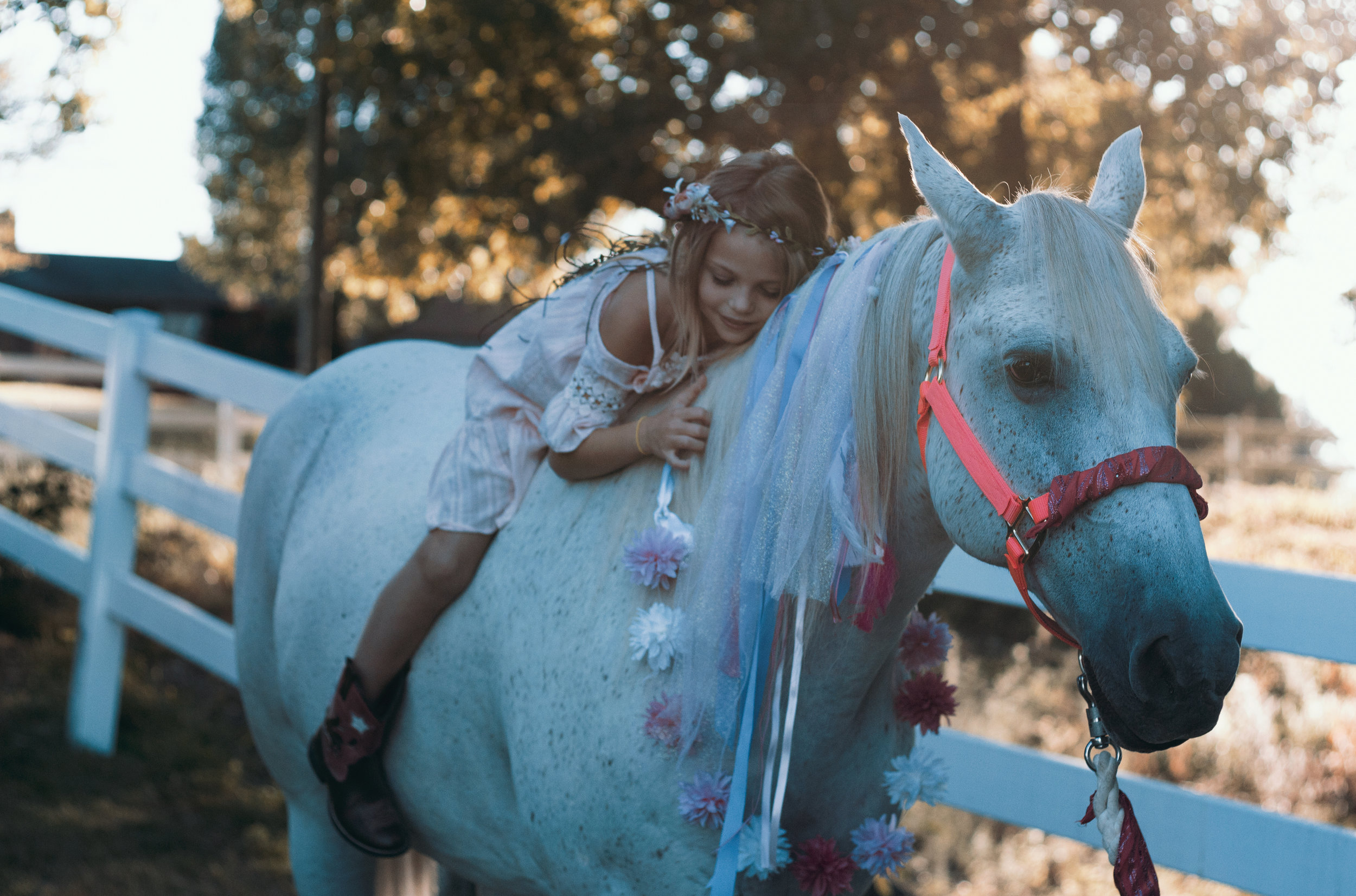 Events - Fairhope Stables is the perfect place for your next party.
