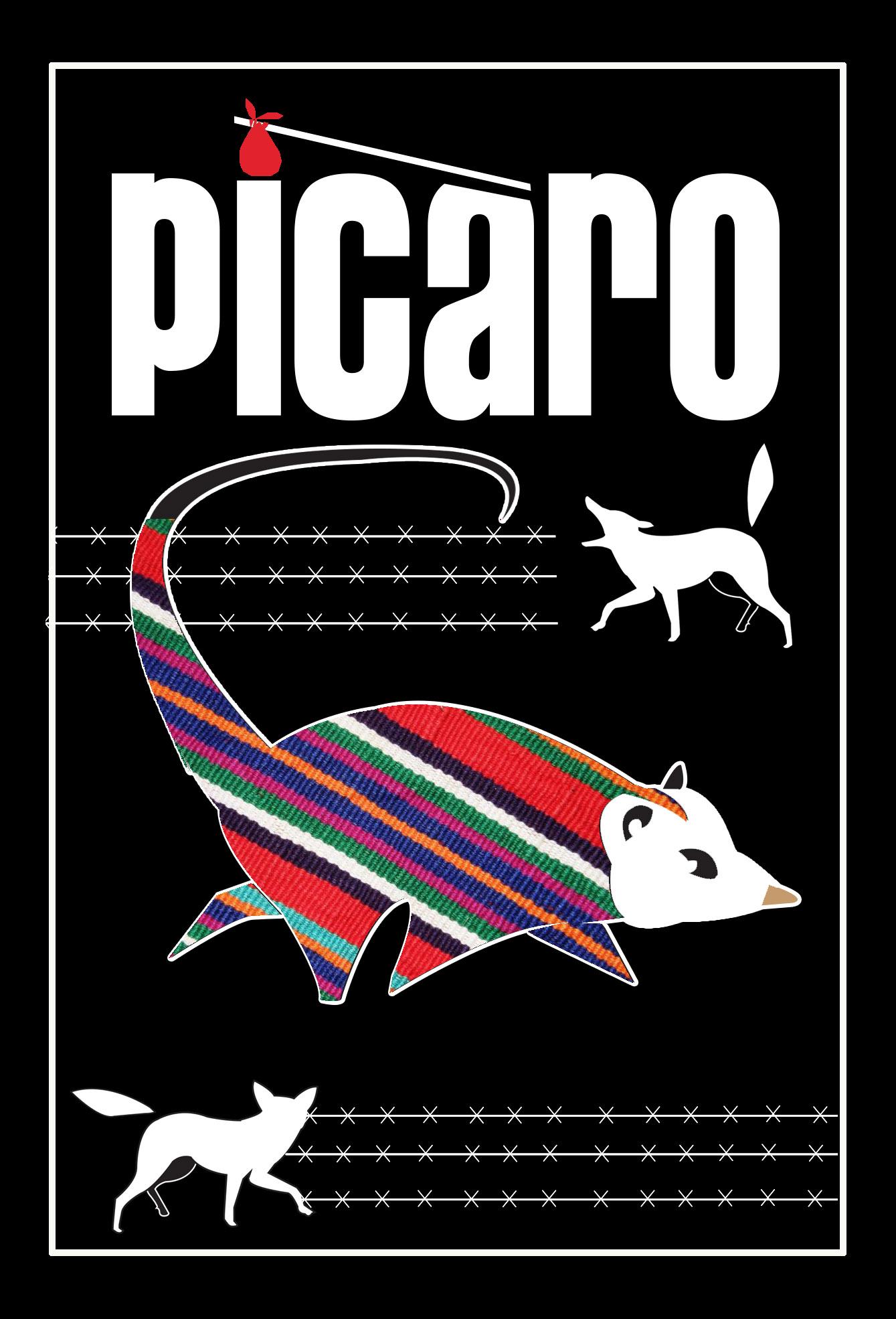 picaro_blk.jpg
