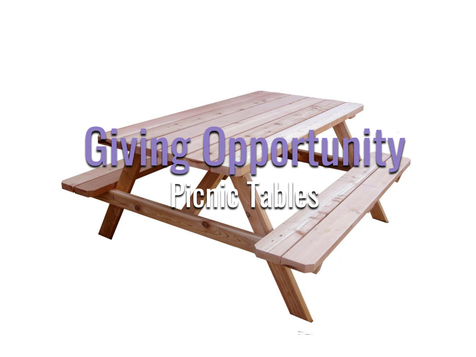 Giving Opportunity (8).png