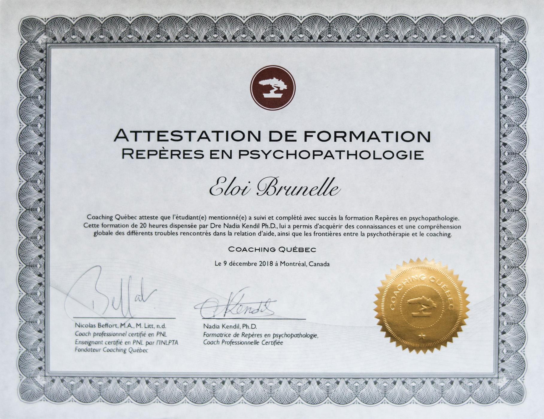 Certification Eloi  repères en psychopathologies cropped.jpg